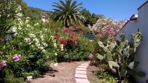 A garden outside B&B Vacanza Facile