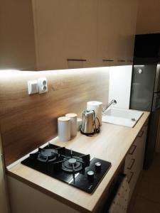 Kuchyňa alebo kuchynka v ubytovaní Entrez Apartment 3 - Historical Centre
