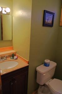 A bathroom at High Country Motel and Cabins