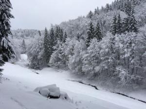 Landferienhaus Linde during the winter