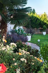 A garden outside Kings Village