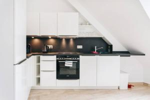 A kitchen or kitchenette at Dill Apartments Frauenkirchenblick Dresden II