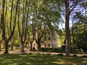 A garden outside Hotel Château Des Alpilles
