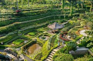 A bird's-eye view of Padma Resort Ubud