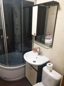 A bathroom at Apartment for Family and Friends in the Center of Novosibirsk