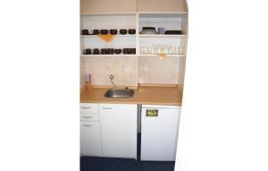 Kuchyň nebo kuchyňský kout v ubytování Apartment Svetla pod Jestedem I