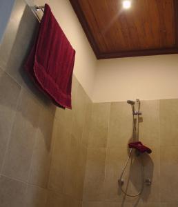 A bathroom at Nid'Aigle Lodge