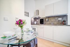 Kuchyň nebo kuchyňský kout v ubytování Studio Vlněna