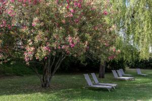 A garden outside Parador de Tui