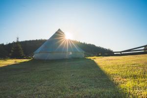 Ein Garten an der Unterkunft Trapani glamping camp