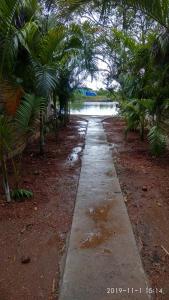 The swimming pool at or near The Bay Agonda