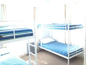 A bunk bed or bunk beds in a room at Latrobe Mersey River Cabin and Caravan Park