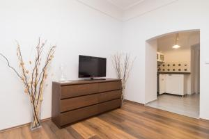 A television and/or entertainment center at Budyne Apartment II.