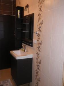 A bathroom at Apartament Krynica Eland
