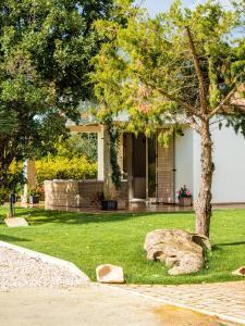 A garden outside Sa Costa