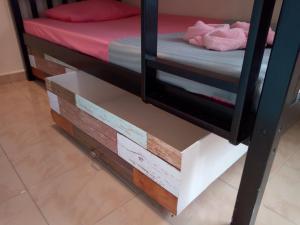 Ein Etagenbett oder Etagenbetten in einem Zimmer der Unterkunft Rainbow Lodge Female Dorm