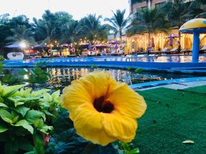 The swimming pool at or close to Con Khuong Resort Can Tho