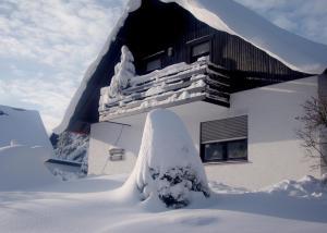 Ferienwohnungen Annegret Schütte during the winter