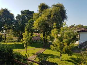 A garden outside CTL - Itaparica