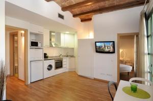 A kitchen or kitchenette at Apart-Suites Hostemplo