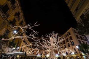 La fantasia dell'accoglienza during the winter