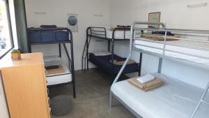 A bunk bed or bunk beds in a room at Bay Adventurer Backpackers & Apartments