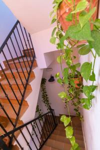 A balcony or terrace at Hostal Rural La Fonda Del Rocio