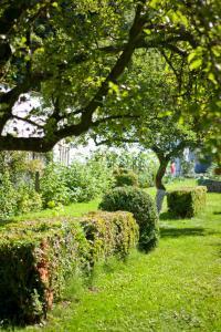A garden outside Lozerkasteel