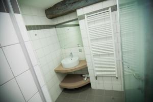 Een badkamer bij Apartment De Maasnacht