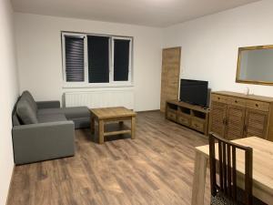 Televízia a/alebo spoločenská miestnosť v ubytovaní Luxury Private Apartment