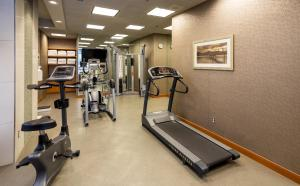 The fitness center and/or fitness facilities at Holiday Inn Express Vancouver-Metrotown (Burnaby)
