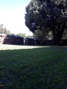 A garden outside Domus Liscia di Vacca