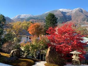 Onsen & Garden -Asante Inn-