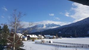 Ferienwohnung Inrefrid in de winter