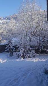 Grün Hof Militray-Sadyba during the winter