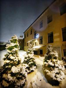 Apartamenti DVINSKA during the winter