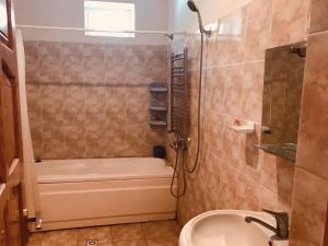 Um banheiro em iron river house