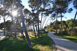 Jardín al aire libre en WVP - Catalunya 4