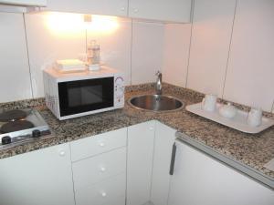 Una cocina o zona de cocina en Apartamentos Descartes