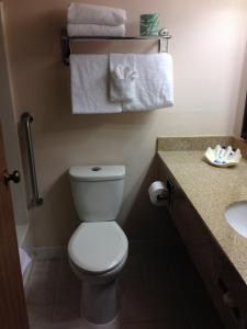 A bathroom at Best Western El Grande Inn