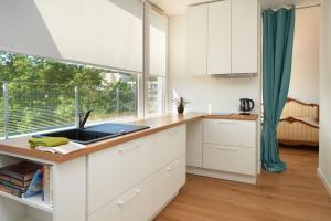 Virtuvė arba virtuvėlė apgyvendinimo įstaigoje Central Apartment