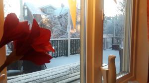 Maude´s Hotel Enskede Stockholm under vintern