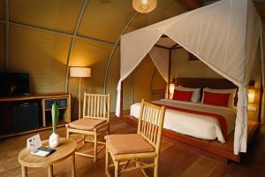 Ein Etagenbett oder Etagenbetten in einem Zimmer der Unterkunft Templation Hotel