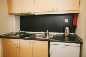Η κουζίνα ή μικρή κουζίνα στο Du Lac