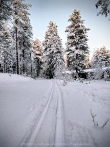 Hömäkkä Oy during the winter