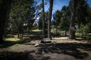 A garden outside Hostel El Mirador