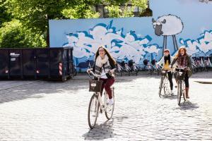 Vélo sur le terrain de l'établissement Sleep in Heaven ou dans les environs