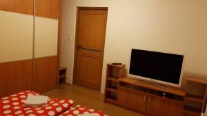 TV a/nebo společenská místnost v ubytování Villa Lienka