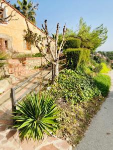 Jardín al aire libre en Masia Pau Prat