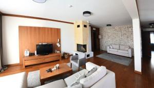 Aparthotel Vucko tesisinde bir televizyon ve/veya eğlence merkezi